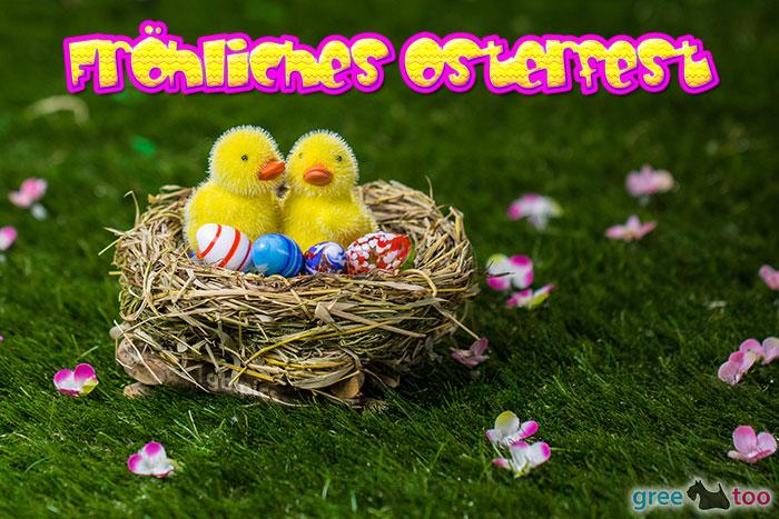 Froehliches Osterfest Bild - 1gb.pics