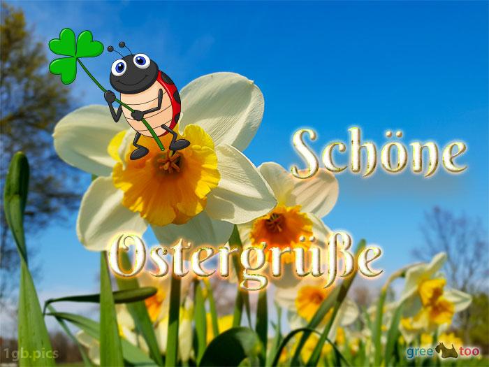 Schoene Ostergruesse Bild - 1gb.pics