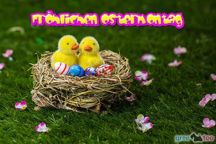 Froehlichen Ostermontag Bild - 1gb.pics