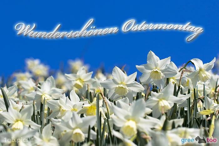 Wunderschoenen Ostermontag Bild - 1gb.pics