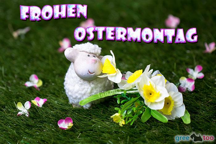 Frohen Ostermontag Bild - 1gb.pics