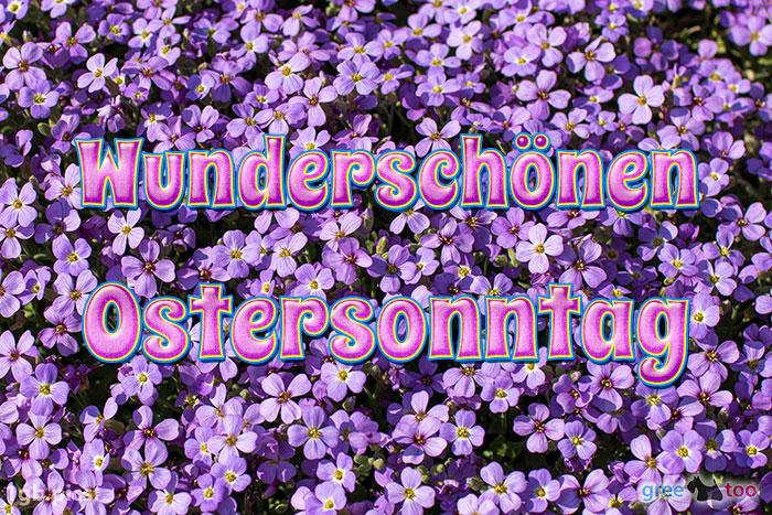 Wunderschoenen Ostersonntag Bild - 1gb.pics