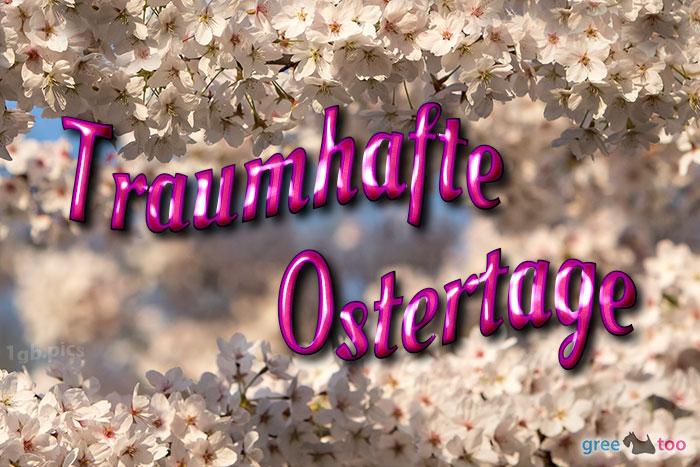 Traumhafte Ostertage Bild - 1gb.pics