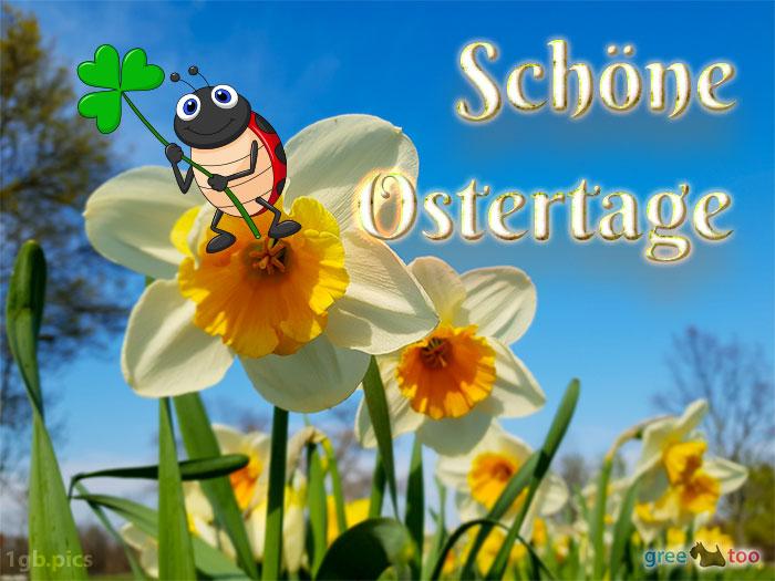 Schoene Ostertage Bild - 1gb.pics