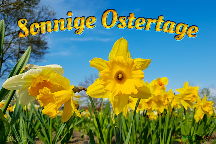 Sonnige Ostertage