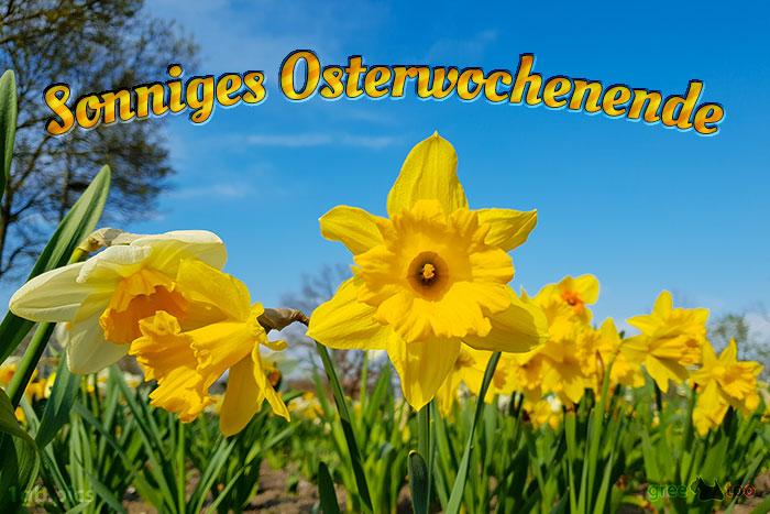 Sonniges Osterwochenende Bild - 1gb.pics