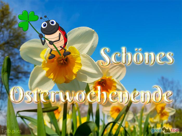 Schoenes Osterwochenende Bild - 1gb.pics