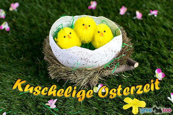 Kuschelige Osterzeit Bild - 1gb.pics