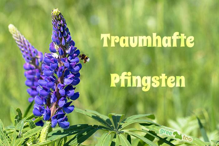 Traumhafte Pfingsten Bild - 1gb.pics