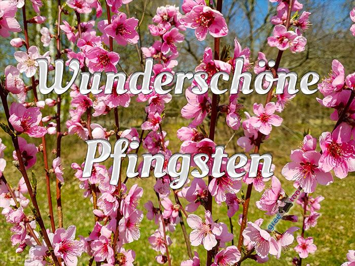 Wunderschoene Pfingsten Bild - 1gb.pics