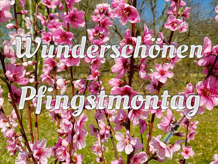 Wunderschoenen Pfingstmontag Bild - 1gb.pics
