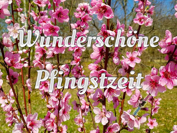 Wunderschoene Pfingstzeit Bild - 1gb.pics
