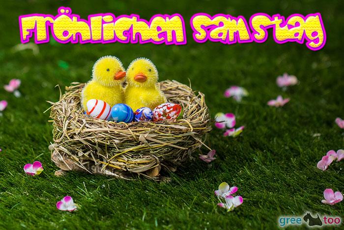 Froehlichen Samstag Bild - 1gb.pics
