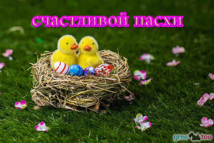 Schastlivoy Paskhi Bild - 1gb.pics
