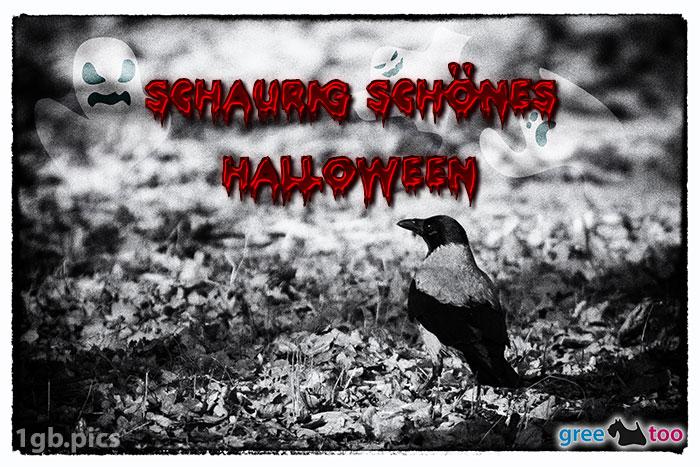 Kraehe Schaurig Schoenes Halloween Bild - 1gb.pics