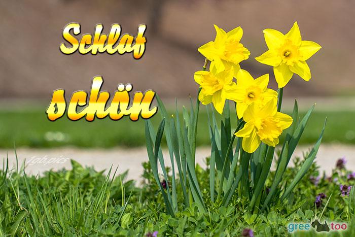 Schlaf Schoen Bild - 1gb.pics