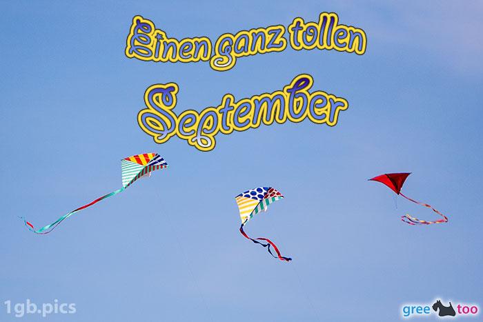 Drachen Einen Ganz Tollen September Bild - 1gb.pics