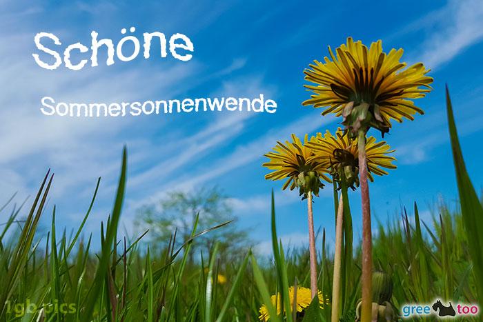 Loewenzahn Himmel Schoene Sommersonnenwende Bild - 1gb.pics