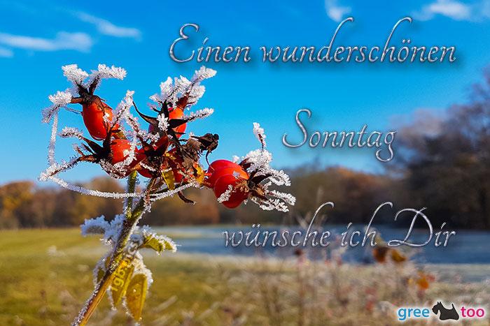 Sonntag Whatsapp Bilder Gästebuchbilder 1gb Pics