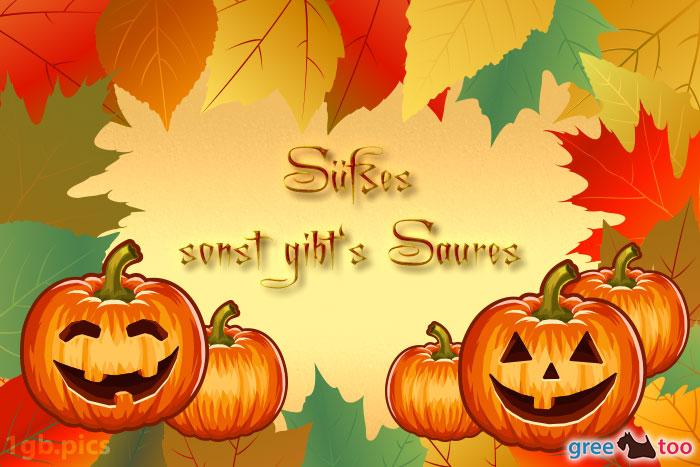 Herbstblaetter Kuerbis Suesses Sonst Saures Bild - 1gb.pics