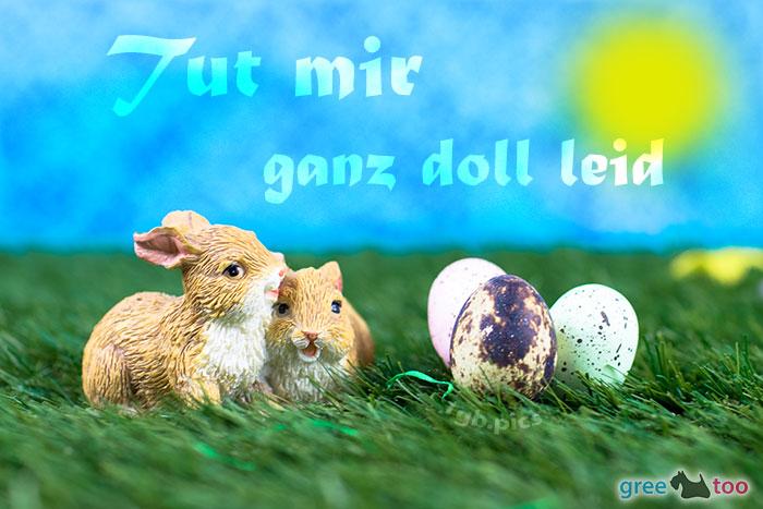 Tut Mir Ganz Doll Leid Bild - 1gb.pics