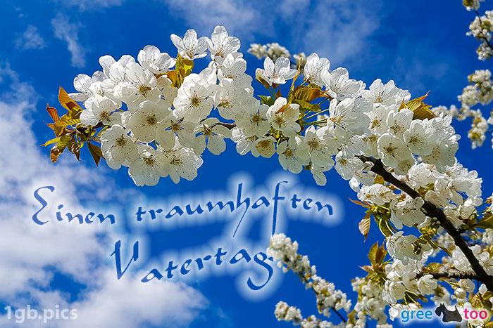 Kirschblueten Einen Traumhaften Vatertag Bild - 1gb.pics