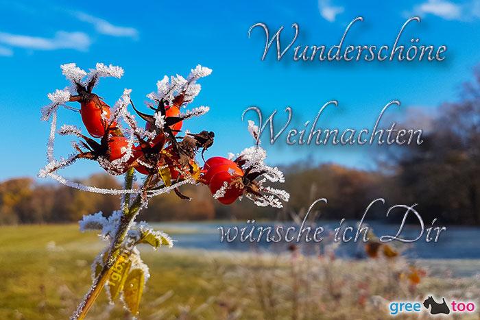 Wunderschoene Weihnachten Bild - 1gb.pics