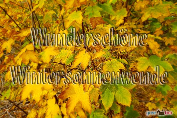 Wunderschoene Wintersonnenwende Bild - 1gb.pics