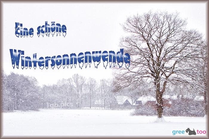 Eine Schoene Wintersonnenwende Bild - 1gb.pics