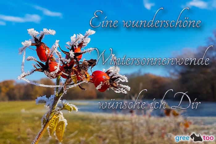 Eine Wunderschoene Wintersonnenwende Bild - 1gb.pics