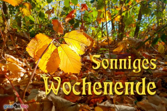 Sonniges Wochenende Bild - 1gb.pics