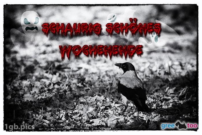 Kraehe Schaurig Schoenes Wochenende Bild - 1gb.pics