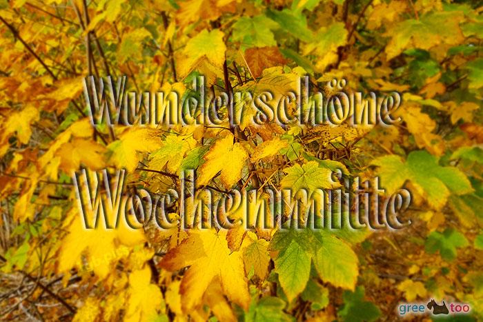 Wunderschoene Wochenmitte Bild - 1gb.pics