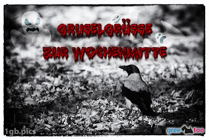 Kraehe Gruselgruesse Zur Wochenmitte Bild - 1gb.pics