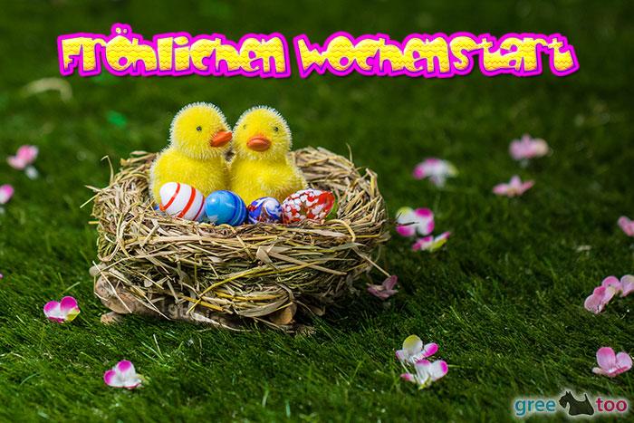 Froehlichen Wochenstart Bild - 1gb.pics