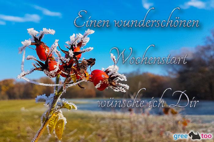 Einen Wunderschoenen Wochenstart Bild - 1gb.pics