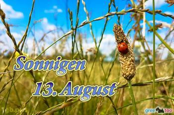 13. August Bilder