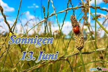 13. Juni Bilder