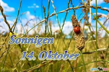 14. Oktober Bilder