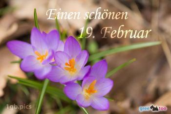 19. Februar Bilder