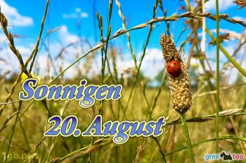 20. August Bilder