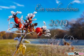2019 Bilder
