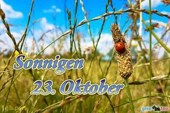 23. Oktober Bilder