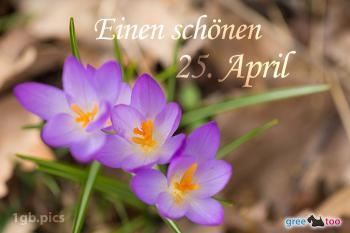 25. April Bilder