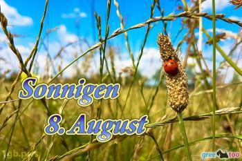 8. August Bilder