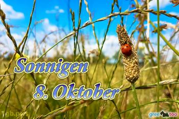 8. Oktober Bilder