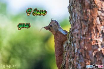 I love you Bilder