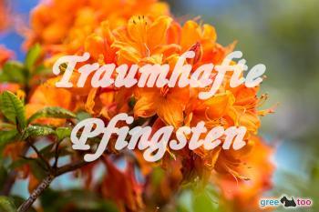 Pfingsten Bilder