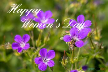 Happy Womens Day Bilder